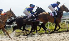 Pferderennen für das prize Derby Stockfoto