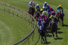 Pferderennen-Jockeys, die Ecke laufen Stockfotografie
