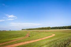 Pferderennen-Reiter, die Landschaft ausbilden Stockfotografie