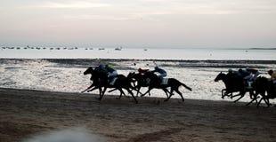 Pferderennen am Strand von Sanlucar de Barrameda, Cadiz stockfotos