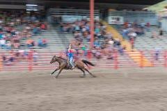 Pferderennensieger hebt Arm im Sieg an Lizenzfreie Stockbilder