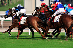 Pferderennenspiel von Hong Kong Lizenzfreie Stockfotos