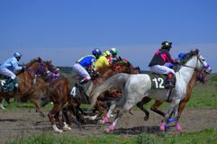 Pferderennensprint Lizenzfreie Stockbilder