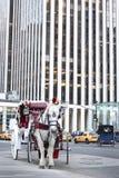 Pferderikscha in New York City Stockfotos