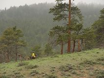 Pferderuecken-Mitfahrer in den Bergen Lizenzfreies Stockbild