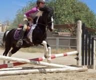 Pferderuecken-Mitfahrer-Springen Stockfoto
