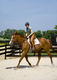 Pferderueckenreiten der jungen Dame Lizenzfreie Stockfotografie