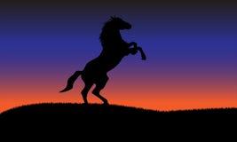 Pferdeschattenbildhintergrund Stockfoto