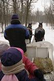 Pferdeschlitten-Fahrt lizenzfreie stockbilder
