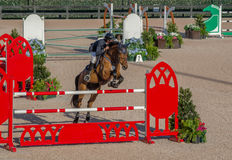 Pferdeshow, die an einem großen Ereignis springt Lizenzfreie Stockfotos