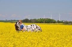 Pferdeumarmung lizenzfreie stockfotos