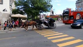 Pferdewagen Lizenzfreies Stockbild