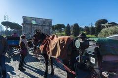 Pferdewagen für Touristen in Rom, Italien Lizenzfreie Stockfotos