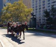 Pferdewagen-Fahrten im Central Park, NYC, NY, USA Stockfotografie