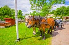 Pferdewagen in Gunnebo-Haus, Gothemburg Stockfoto