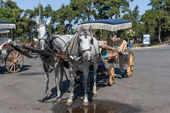 Pferdewagen in Istambul Lizenzfreie Stockfotos