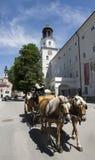 Pferdewagen am Wohnsitz-Quadrat in Salzburg Stockfotografie