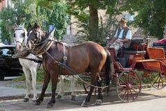 Pferdewagenfahrten in Europa Stockfoto