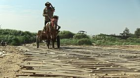 Pferdewarenkorb, Transport, Kambodscha, Südostasien stock video