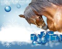 Pferdeweihnachtshintergrund Stockbilder