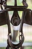 Pferdezaumabschluß oben stockfotos