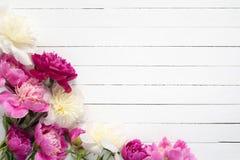 Pfingstrosen auf weißem hölzernem Hintergrund Farbige und Schwarzweiss-Blendenblume Stockfoto