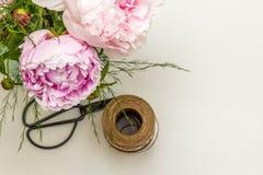 Pfingstrosenblumenanordnung mit Scheren auf weißem Hintergrund Stockfotos