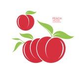 Pfirsich Frucht auf weißem Hintergrund stock abbildung