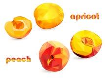 Pfirsich- und Aprikosenfrüchte mit Hälften in der niedrigen Polyart auf einem weißen Hintergrund, lokalisierte Gegenstände vektor abbildung