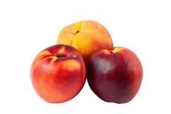 Pfirsich und Nektarinen Stockbilder