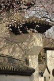 Pfirsichblüte und -architektur Lizenzfreie Stockbilder