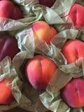 Pfirsiche in den Papierverpackungen lizenzfreies stockfoto