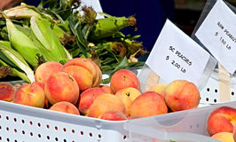 Pfirsiche für Verkauf Lizenzfreie Stockbilder