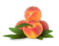 Pfirsiche mit Blatt Lizenzfreies Stockfoto