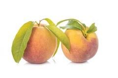Pfirsiche mit den Blättern lokalisiert auf weißem Hintergrund Stockfotos