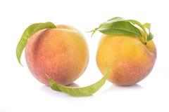 Pfirsiche mit den Blättern lokalisiert auf weißem Hintergrund Lizenzfreies Stockbild
