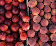 Pfirsiche und Nektarinen auf dem Zähler für Verkauf in einem Lebensmittelgeschäft Stockbild