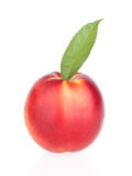 Pfirsichfrüchte mit Blatt Lizenzfreies Stockfoto