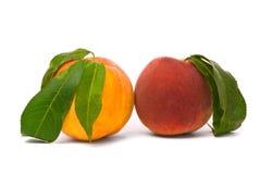 Pfirsichfrüchte mit grünen Blättern Lizenzfreie Stockfotografie