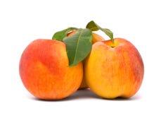 Pfirsichfrüchte mit grünen Blättern Stockfotografie
