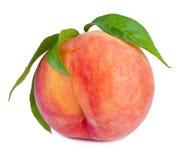 Pfirsichfrucht mit Blättern Stockbild