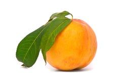 Pfirsichfrucht mit grünen Blättern Stockfoto