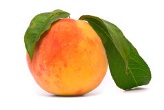 Pfirsichfrucht mit grünen Blättern Lizenzfreies Stockfoto