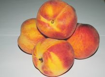 Pfirsichnektarinen auf einem weißen Hintergrund, Makro stockfotos