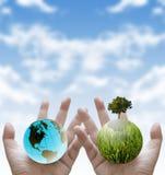 Pflanzen Sie den Baum für Enddas globale Waming, stützbar stockbilder