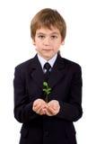 Pflanzen Sie in den Palmen der Kinder Stockbild
