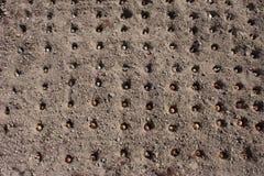 Pflanzen Sie Zwiebel im Boden in der Draufsicht der Löcher Lizenzfreie Stockbilder
