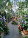 Pflanzen von Feldern Arboretum, Long Island Stockfotos