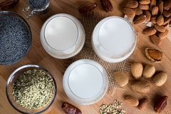 Pflanzenmilch des strengen Vegetariers - Mandelmilch, Mohnmilch und Hanfsamen m Stockfoto
