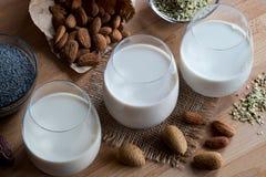 Pflanzenmilch des strengen Vegetariers - Mandelmilch, Mohnmilch und Hanfsamen m Lizenzfreies Stockfoto